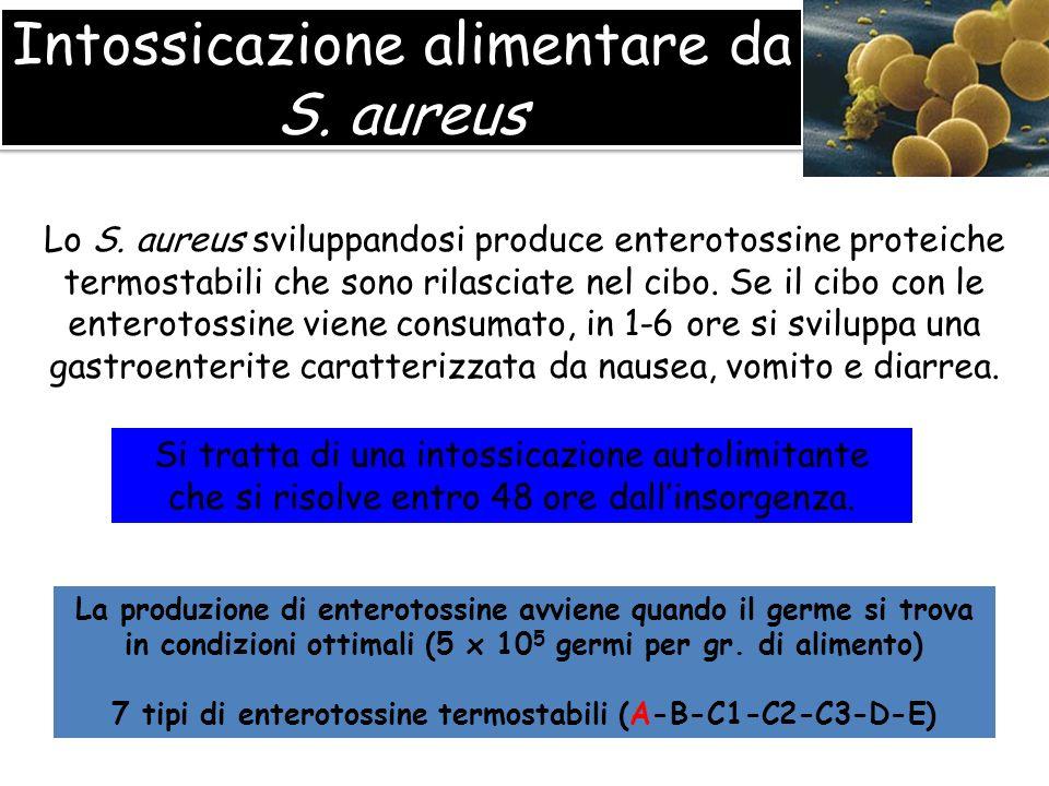Intossicazione alimentare da S. aureus