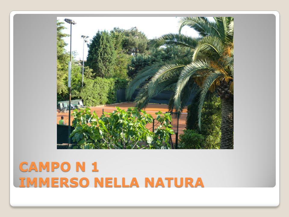 CAMPO N 1 IMMERSO NELLA NATURA
