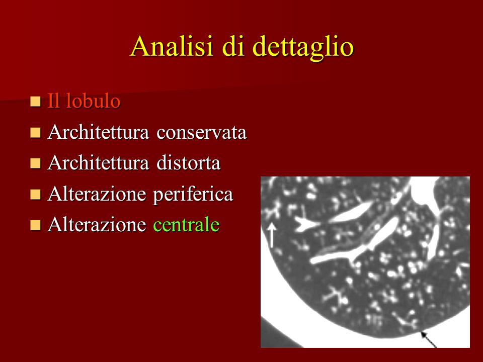 Analisi di dettaglio Il lobulo Architettura conservata