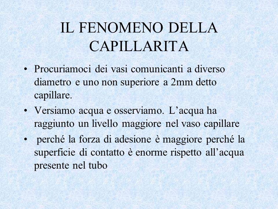 IL FENOMENO DELLA CAPILLARITA