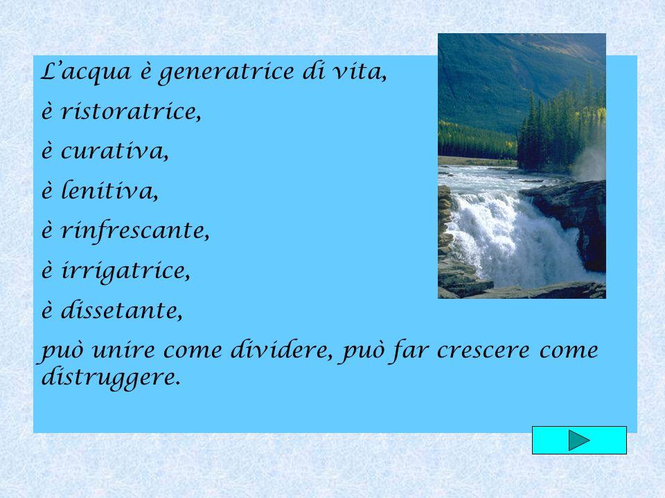 L'acqua è generatrice di vita,