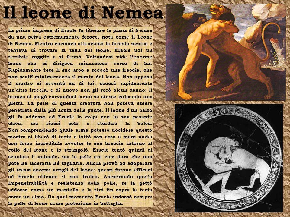 Il leone di Nemea