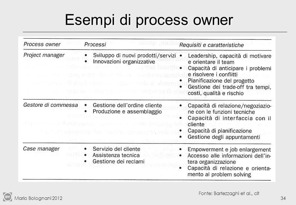 Esempi di process owner