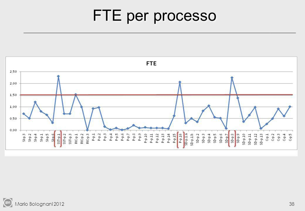 FTE per processo