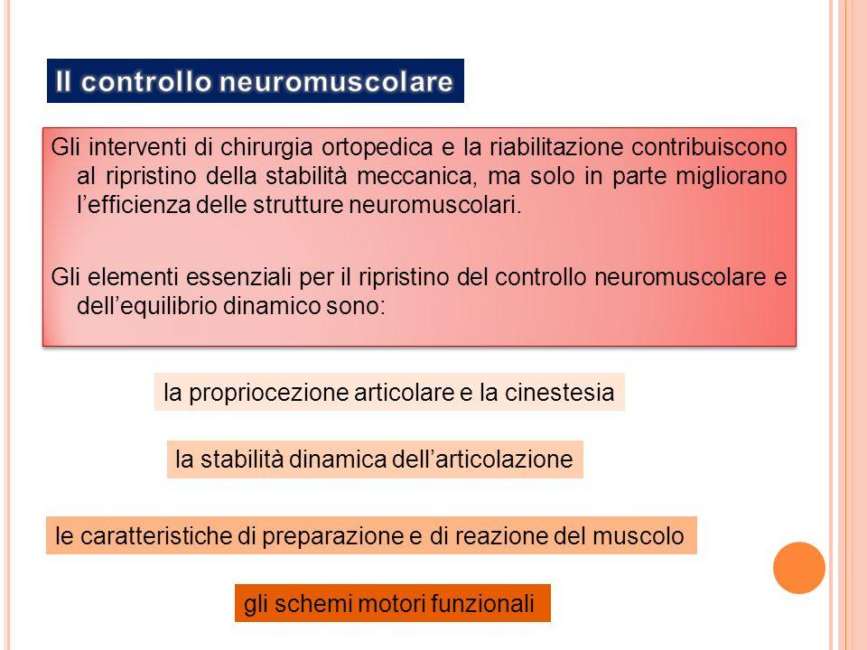 Il controllo neuromuscolare