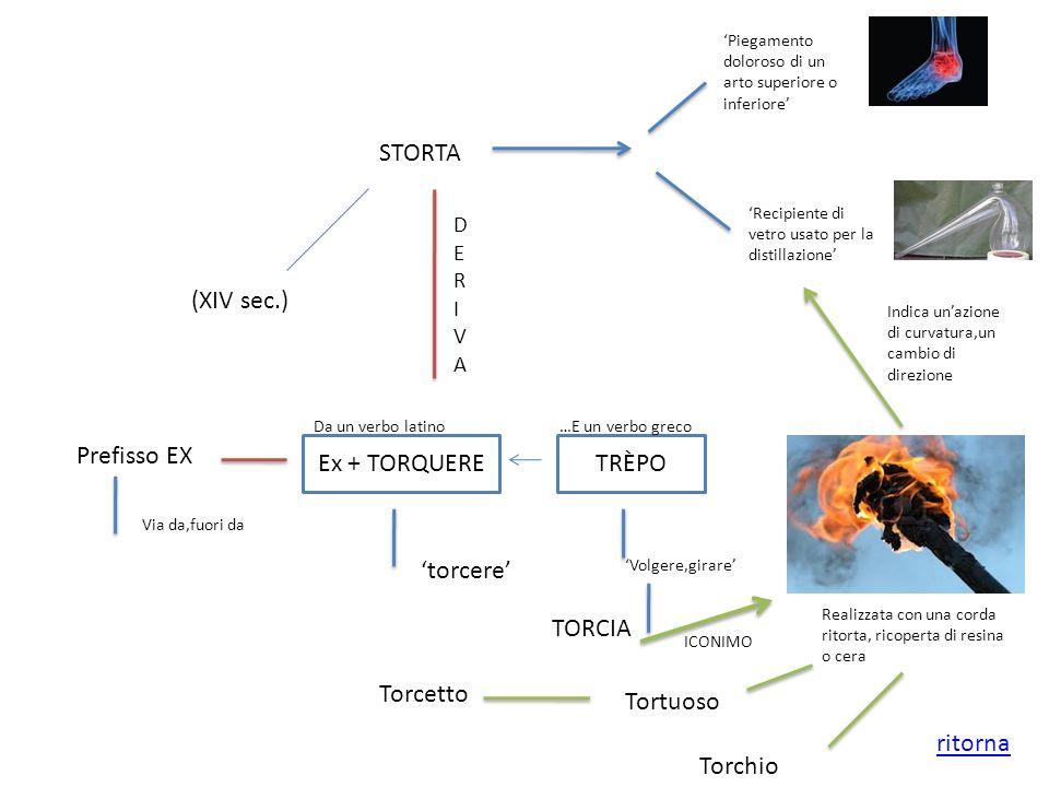 STORTA (XIV sec.) Prefisso EX Ex + TORQUERE TRÈPO 'torcere' TORCIA