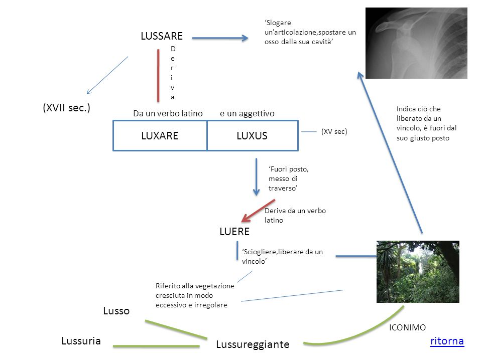 LUSSARE (XVII sec.) LUXARE LUXUS LUERE Lusso Lussuria ritorna