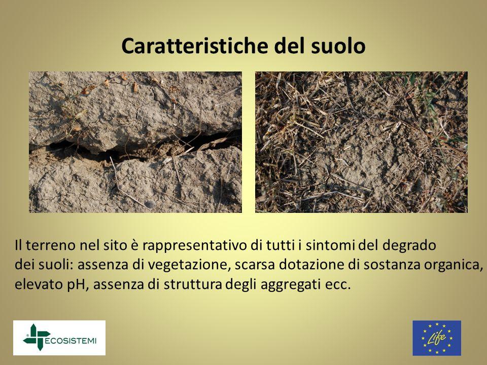 Caratteristiche del suolo
