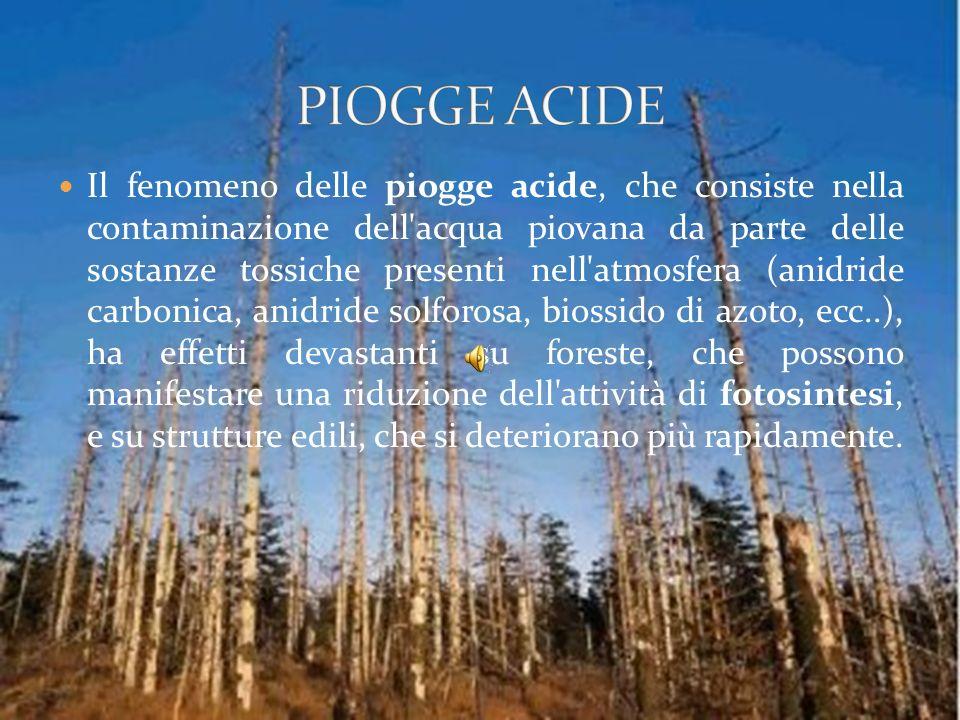 PIOGGE ACIDE