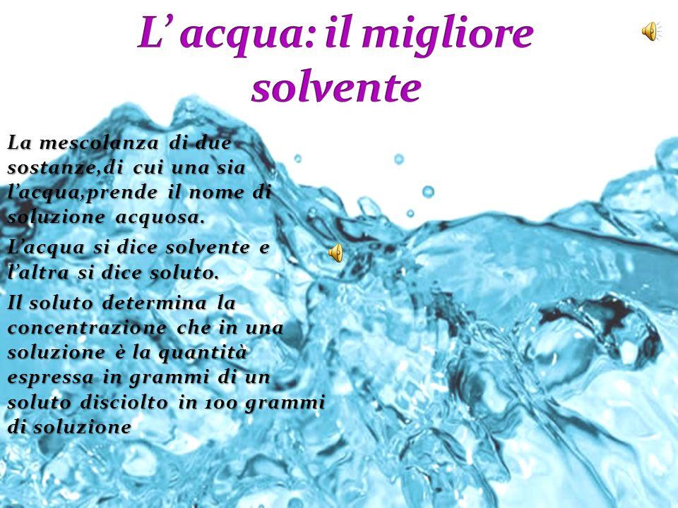L' acqua: il migliore solvente