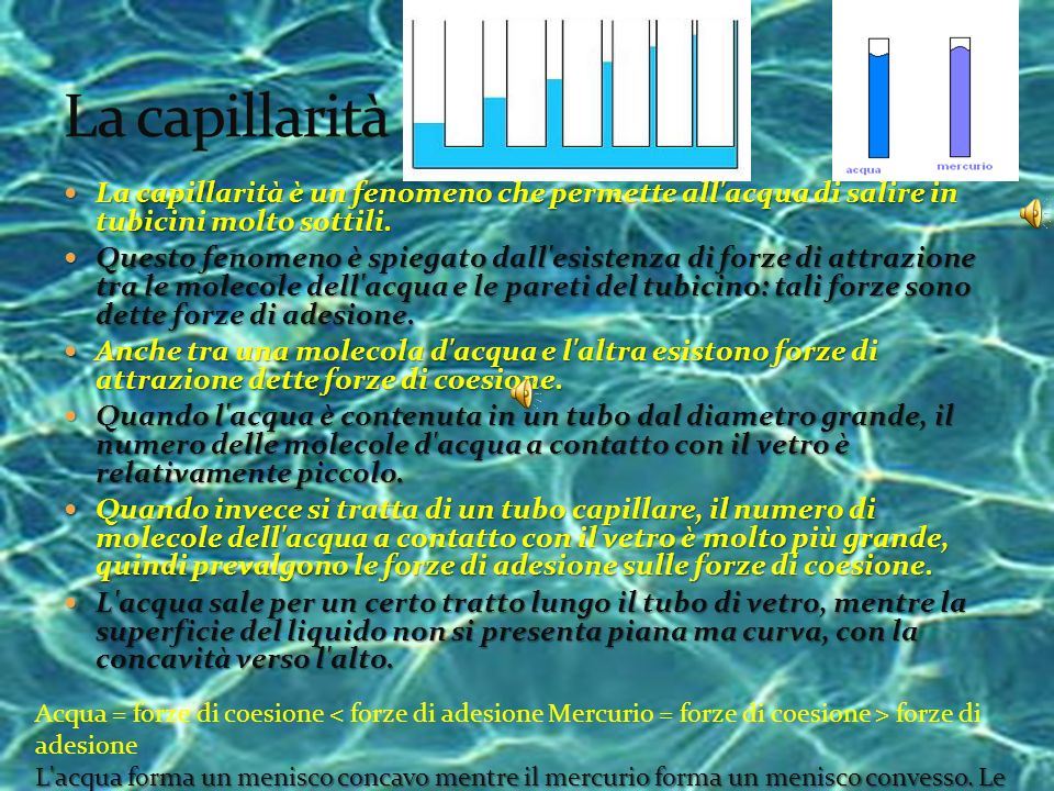 La capillaritàLa capillarità è un fenomeno che permette all acqua di salire in tubicini molto sottili.