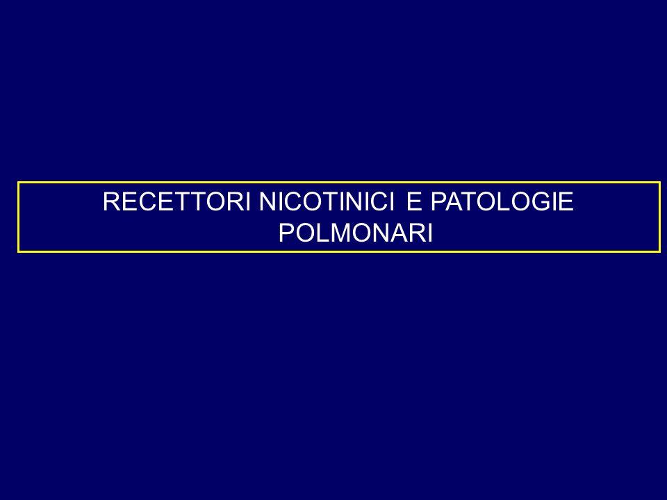 RECETTORI NICOTINICI E PATOLOGIE POLMONARI