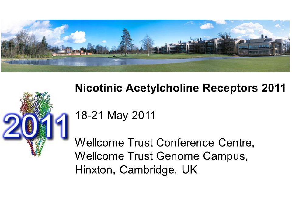 Nicotinic Acetylcholine Receptors 2011