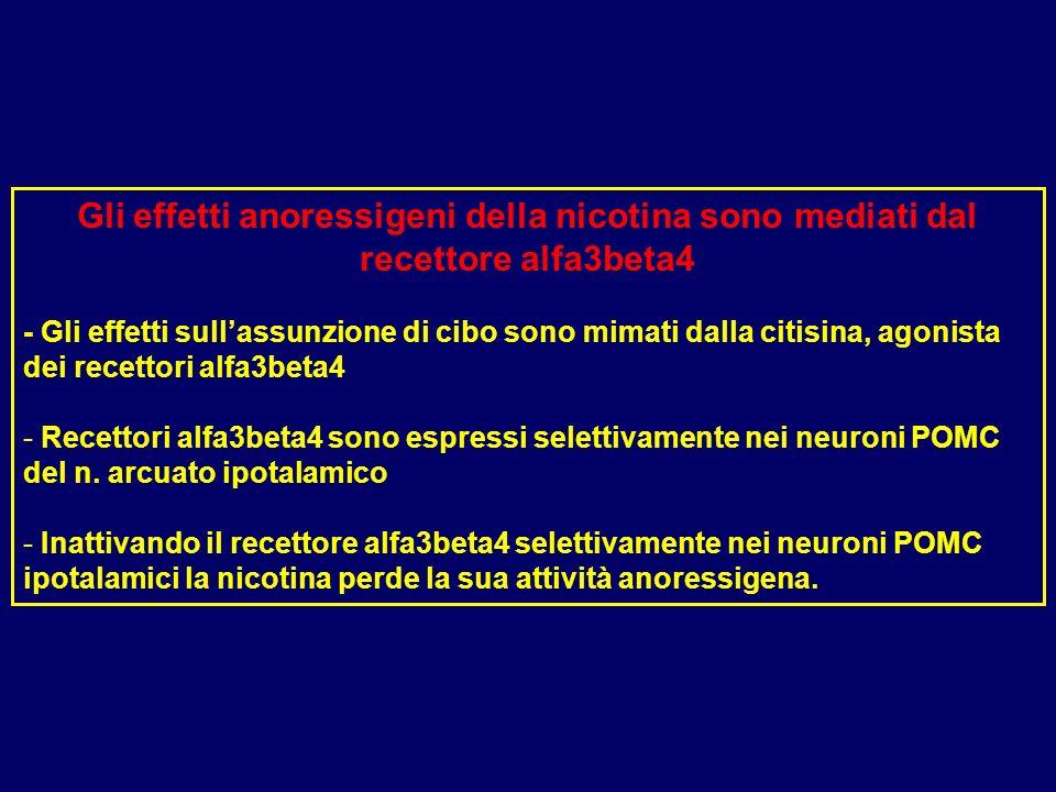Gli effetti anoressigeni della nicotina sono mediati dal recettore alfa3beta4