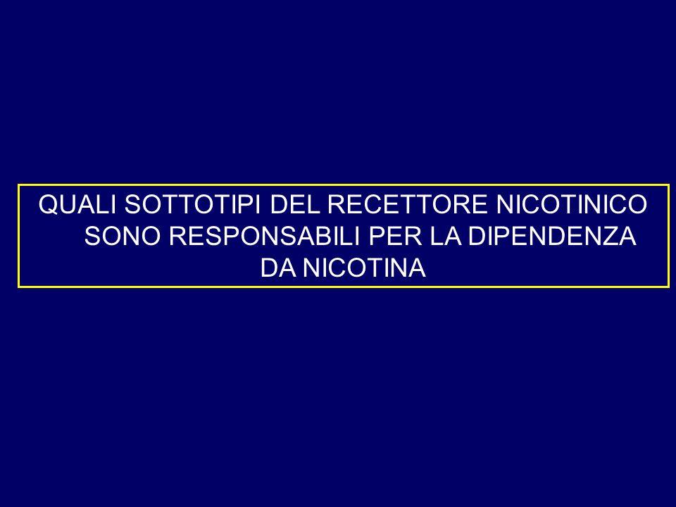 QUALI SOTTOTIPI DEL RECETTORE NICOTINICO SONO RESPONSABILI PER LA DIPENDENZA