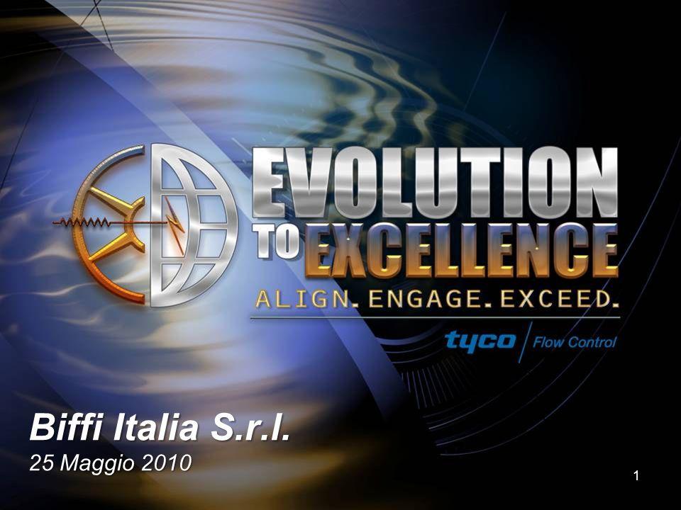 Biffi Italia S.r.l. 25 Maggio 2010