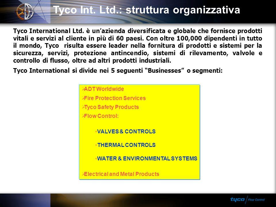 Tyco Int. Ltd.: struttura organizzativa