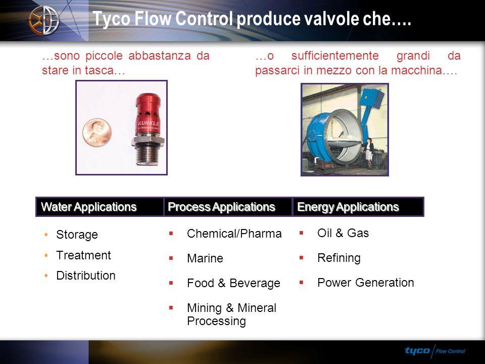 Tyco Flow Control produce valvole che….