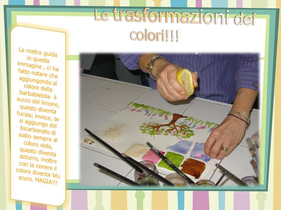 Le trasformazioni dei colori!!!