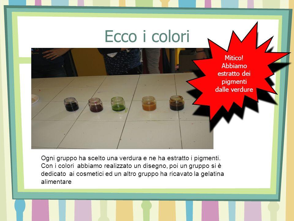 Abbiamo estratto dei pigmenti dalle verdure