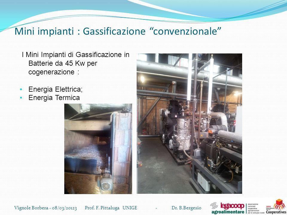Mini impianti : Gassificazione convenzionale