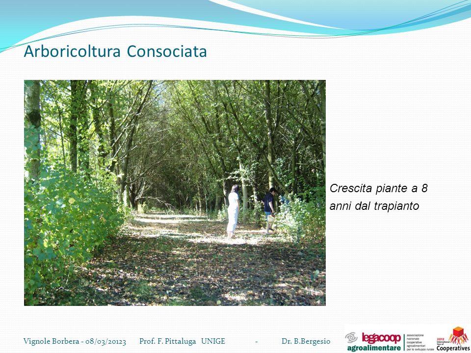 Arboricoltura Consociata