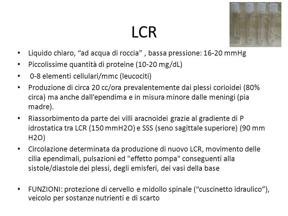 LCR Liquido chiaro, ad acqua di roccia , bassa pressione: 16-20 mmHg