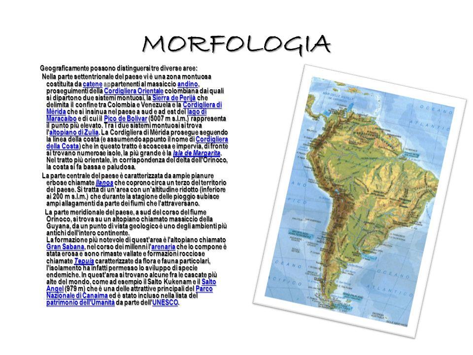 MORFOLOGIA Geograficamente possono distinguersi tre diverse aree: