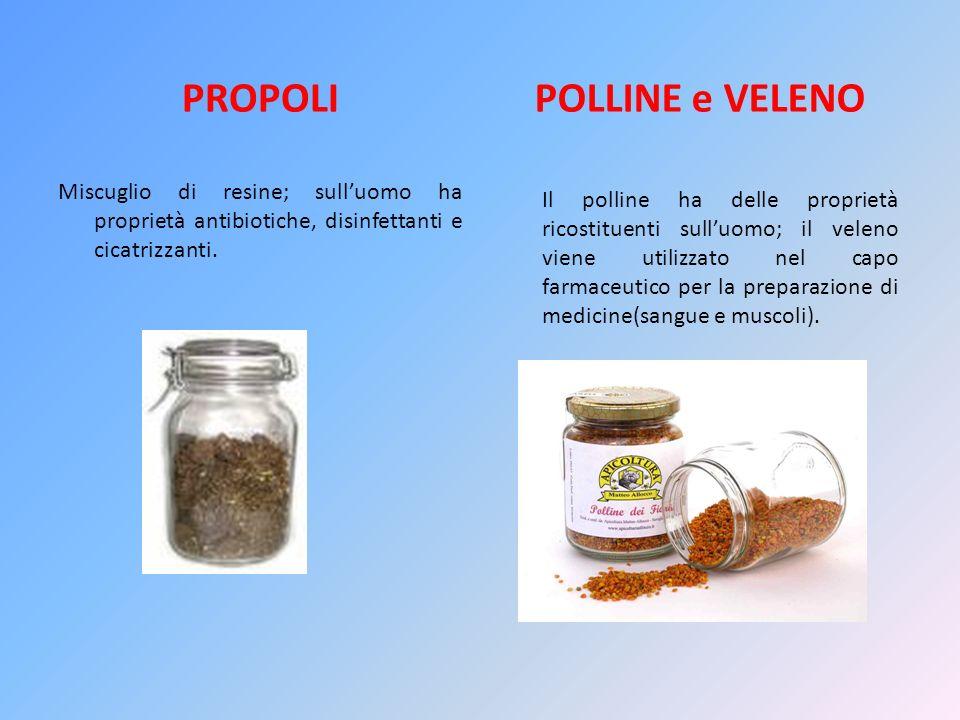 PROPOLI POLLINE e VELENO