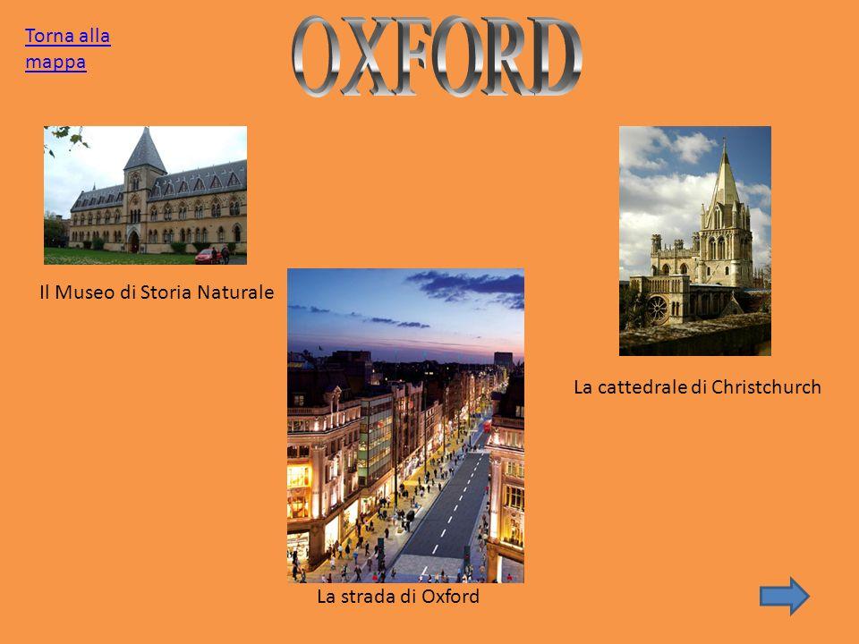 OXFORD Torna alla mappa Il Museo di Storia Naturale