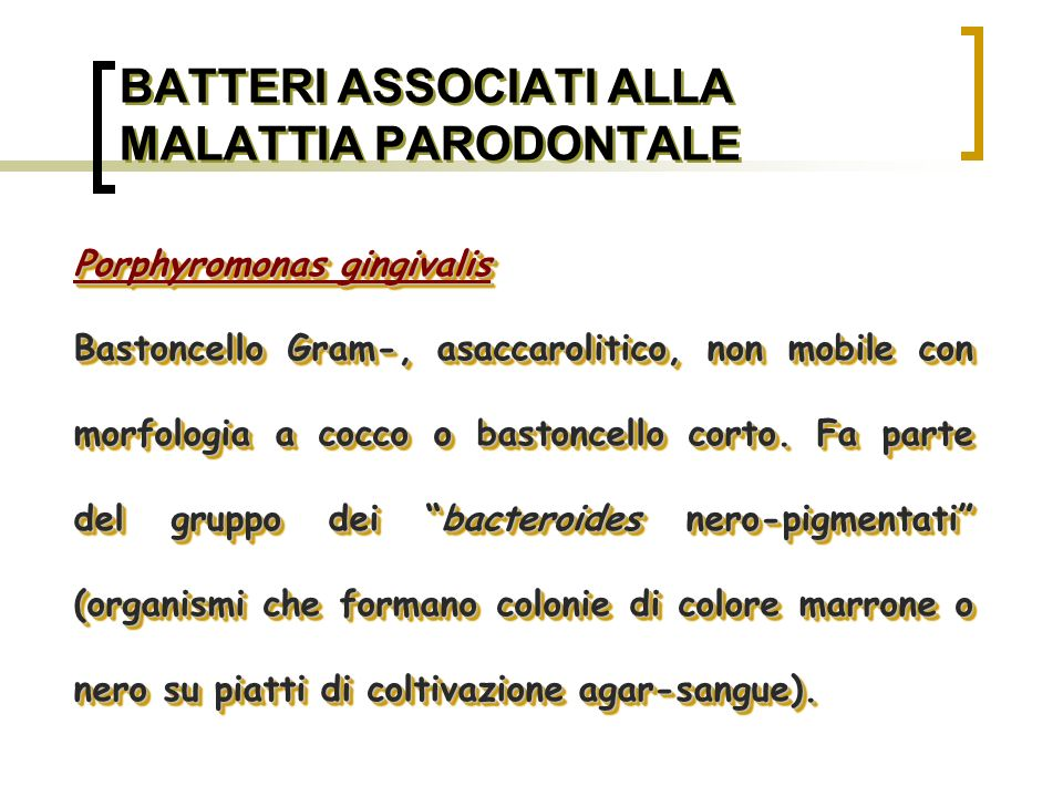 BATTERI ASSOCIATI ALLA MALATTIA PARODONTALE