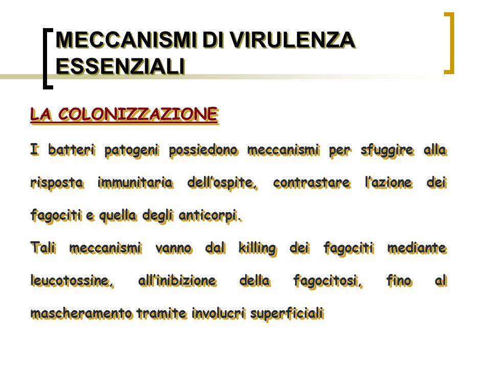 MECCANISMI DI VIRULENZA ESSENZIALI