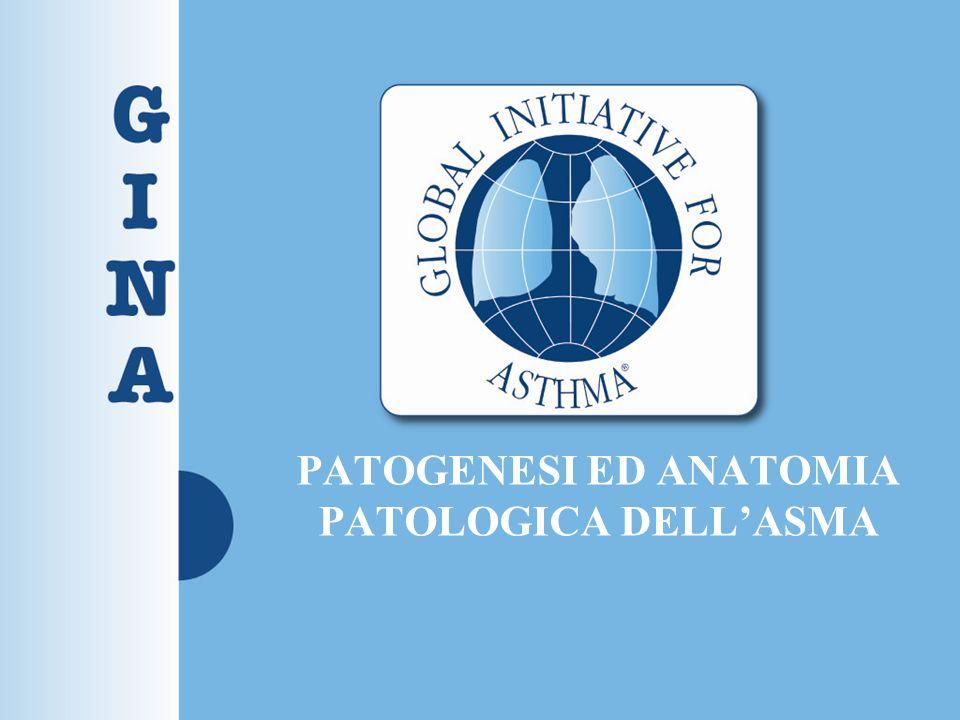 PATOGENESI ED ANATOMIA PATOLOGICA DELL'ASMA