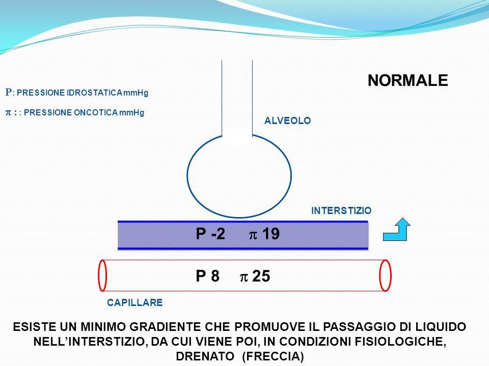 NORMALE P: PRESSIONE IDROSTATICA mmHg. p : : PRESSIONE ONCOTICA mmHg. ALVEOLO. INTERSTIZIO. P -2 p 19.