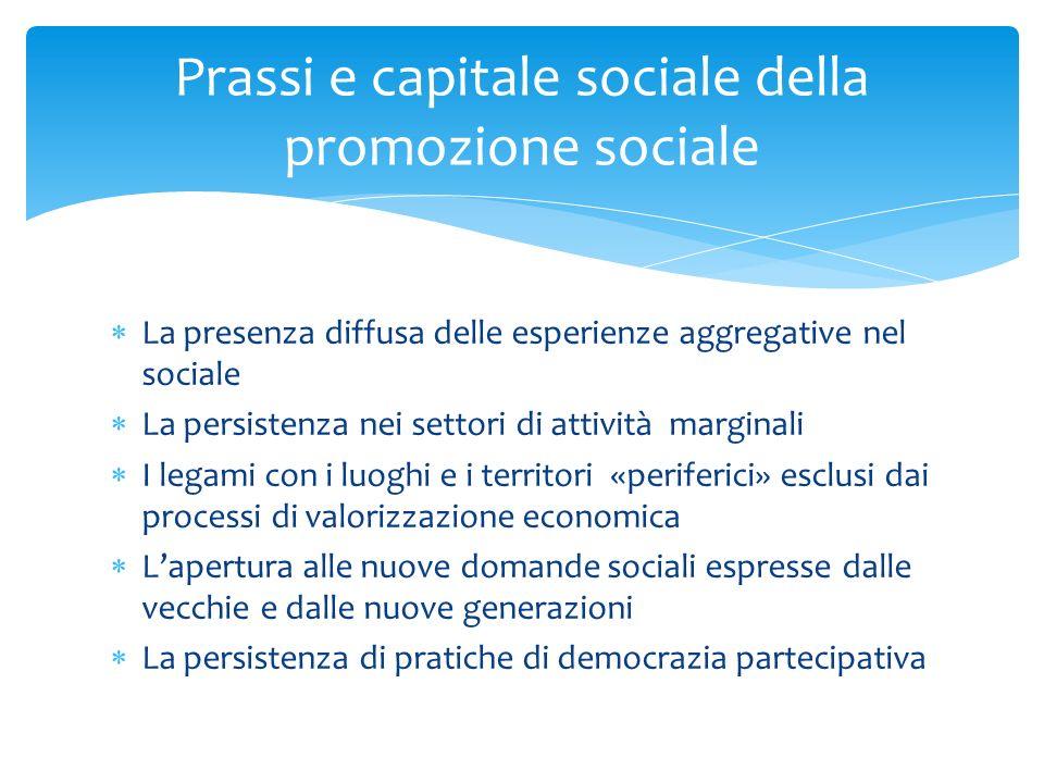 Prassi e capitale sociale della promozione sociale