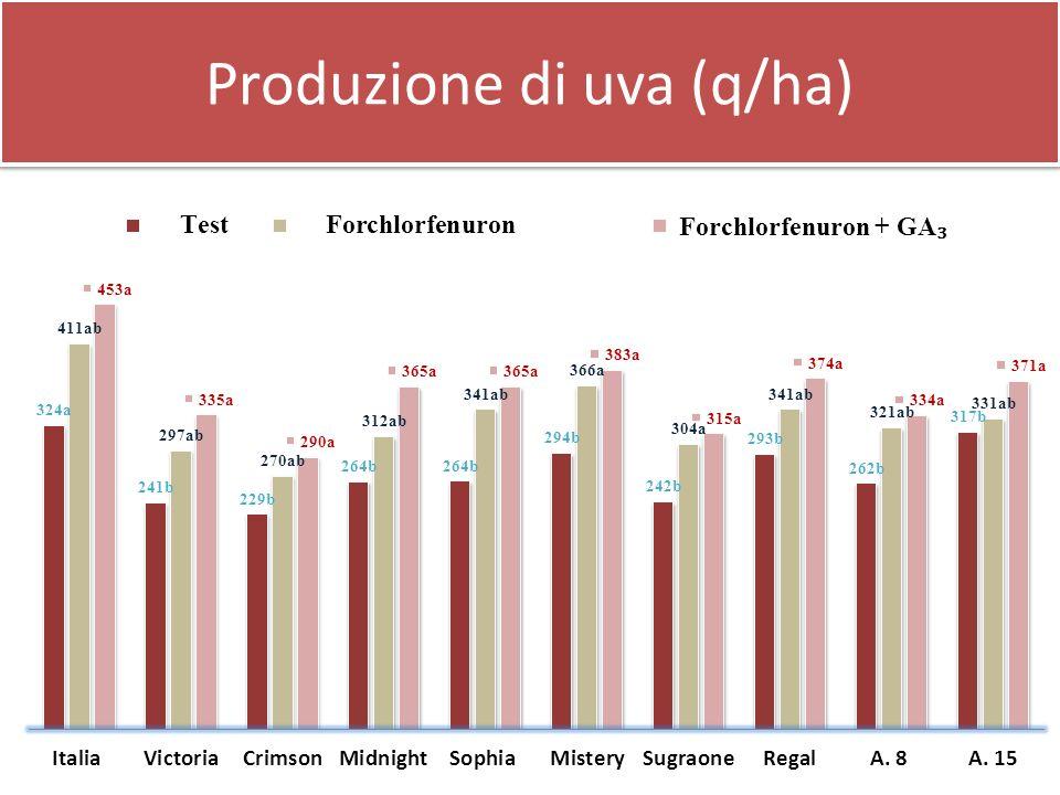 Produzione di uva (q/ha)