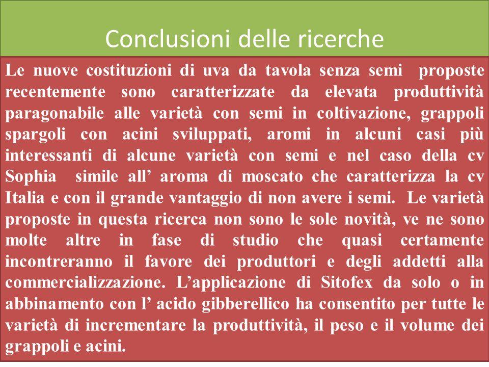 Conclusioni delle ricerche