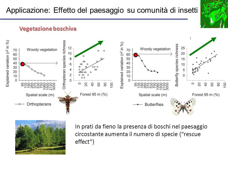 Applicazione: Effetto del paesaggio su comunità di insetti