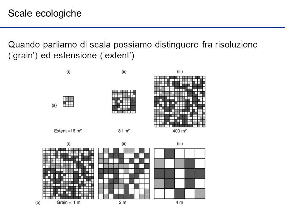 Scale ecologiche Quando parliamo di scala possiamo distinguere fra risoluzione ('grain') ed estensione ('extent')