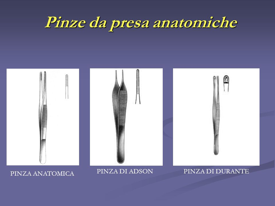 Pinze da presa anatomiche
