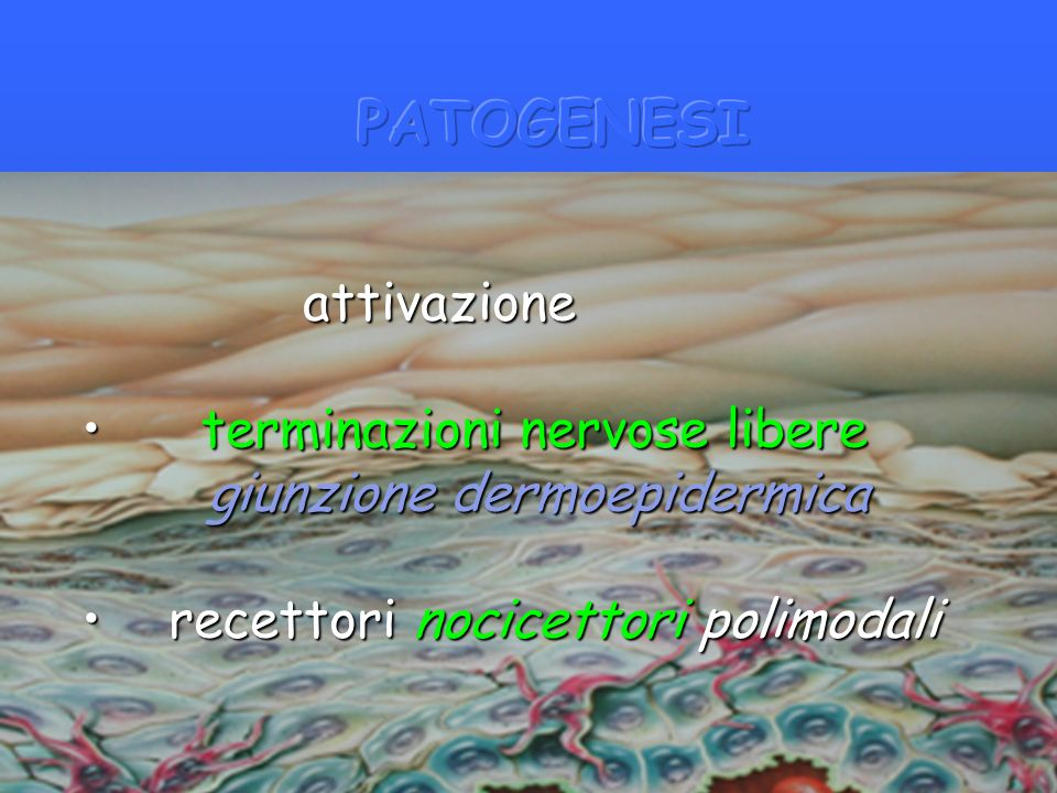 PATOGENESI attivazione terminazioni nervose libere