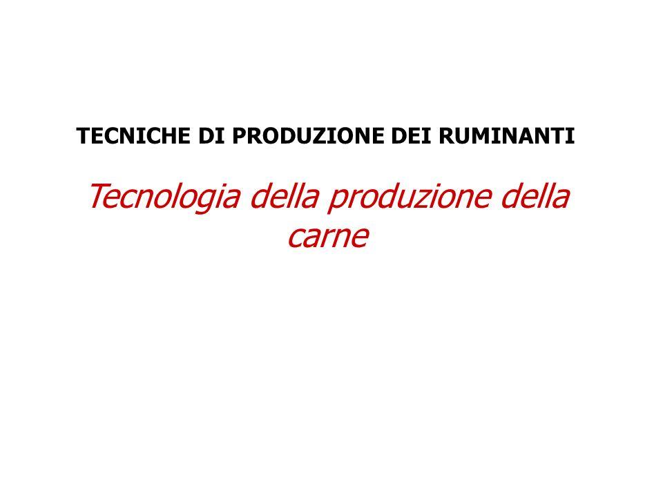 Tecnologia della produzione della carne