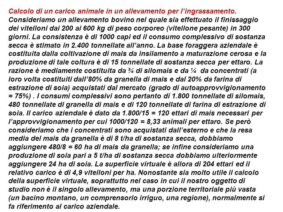 Calcolo di un carico animale in un allevamento per l'ingrassamento