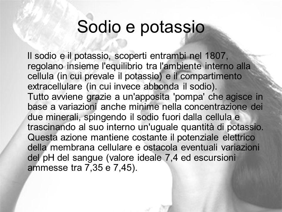 Sodio e potassio