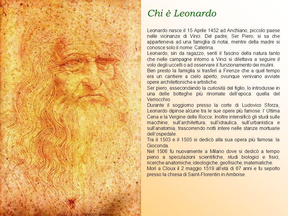 Chi è Leonardo