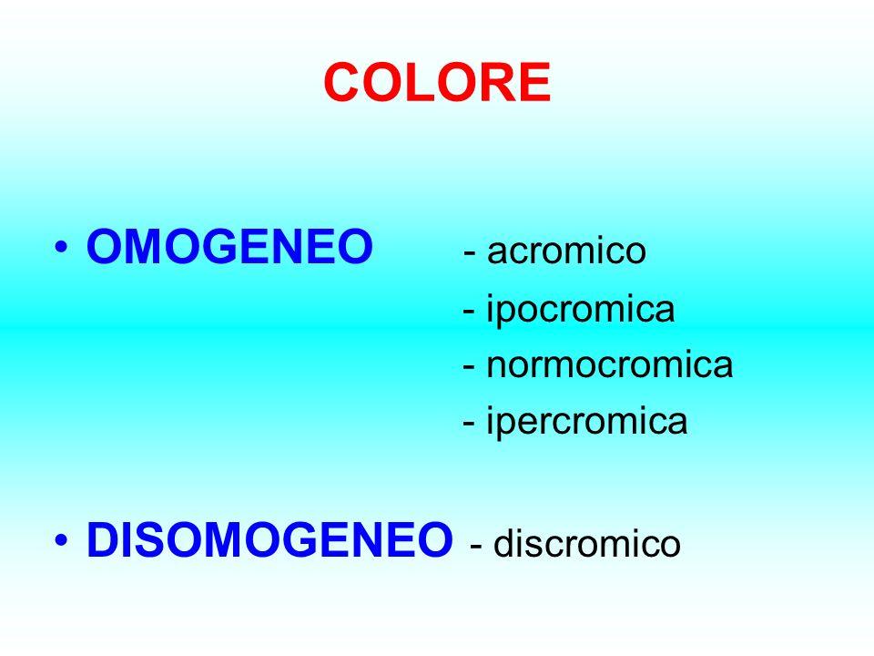 COLORE OMOGENEO - acromico DISOMOGENEO - discromico - ipocromica