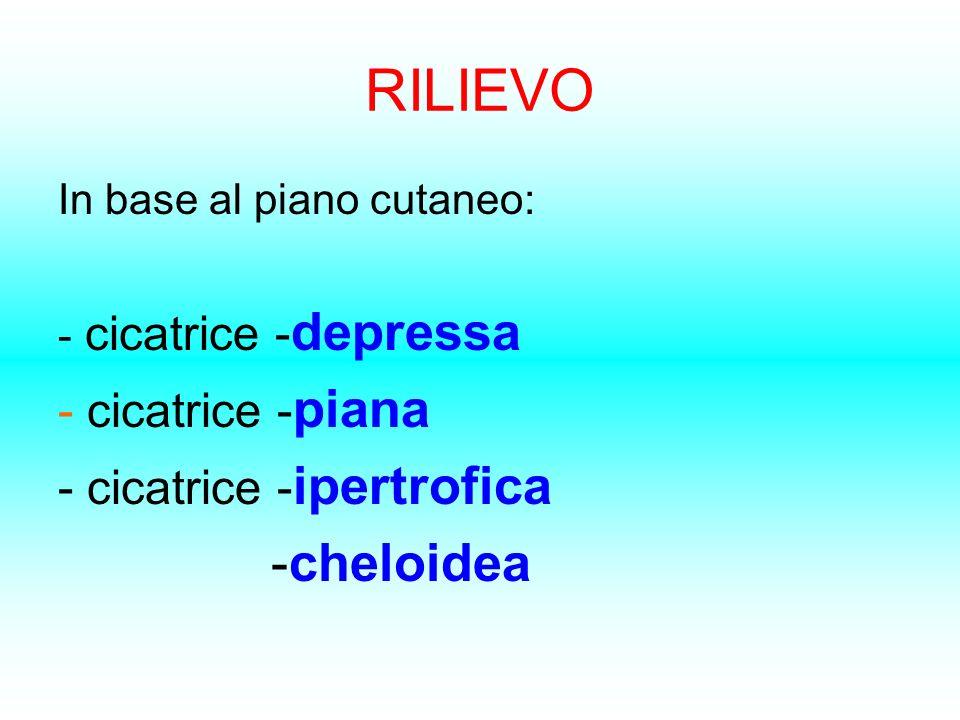 RILIEVO - cicatrice -piana - cicatrice -ipertrofica -cheloidea