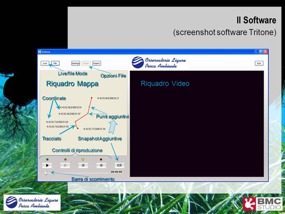 Il Software (screenshot software Tritone) Riquadro Mappa