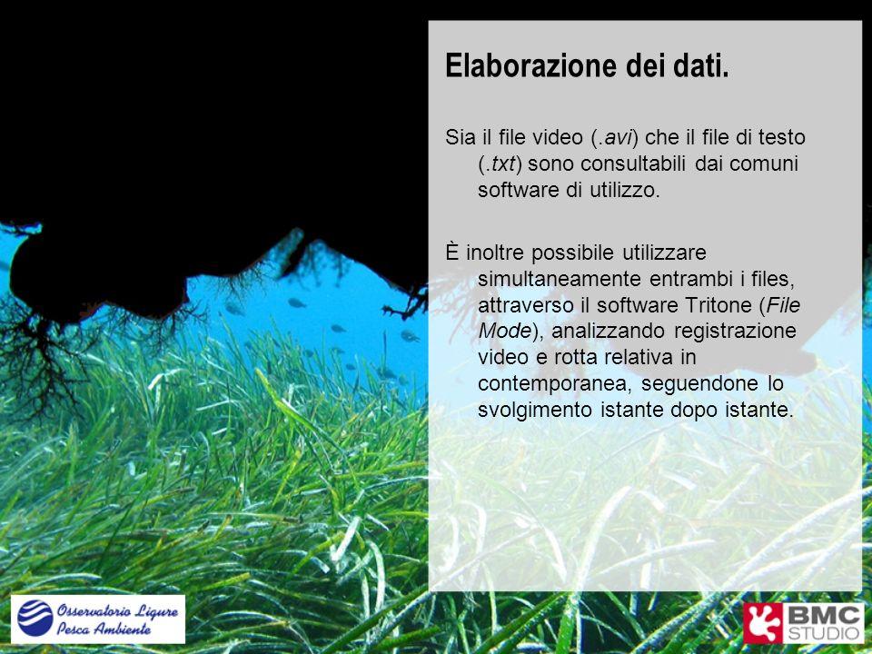 Elaborazione dei dati. Sia il file video (.avi) che il file di testo (.txt) sono consultabili dai comuni software di utilizzo.