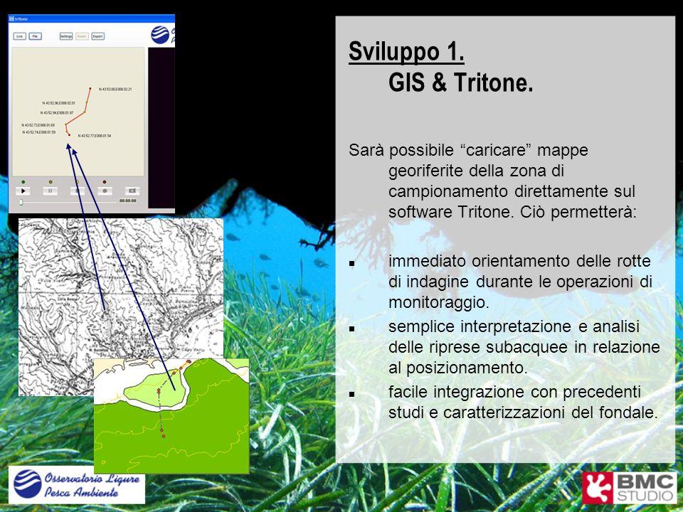 Sviluppo 1. GIS & Tritone.